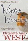 A Winter Wonder: A Pride and Prejudice Novella Variation (Seasons of Serendipity, #5) - Elizabeth Ann West