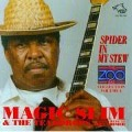 Spider In My Stew - Magic Slim & The Teardrops