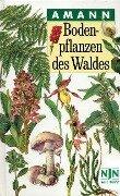 Bodenpflanzen des Waldes - Gottfried Amann, Claudia Summerer
