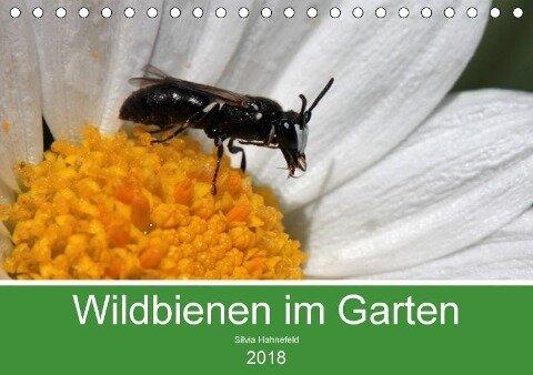 Wildbienen im Garten (Tischkalender 2018 DIN A5 quer) Dieser erfolgreiche Kalender wurde dieses Jahr mit gleichen Bildern und aktualisiertem Kalendarium wiederveröffentlicht. - Silvia Hahnefeld
