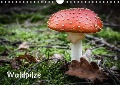 Waldpilze (Wandkalender 2018 DIN A4 quer) - Thomas Schwind