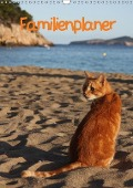 Familienplaner Katzen (Wandkalender 2018 DIN A3 hoch) - Antje Lindert-Rottke