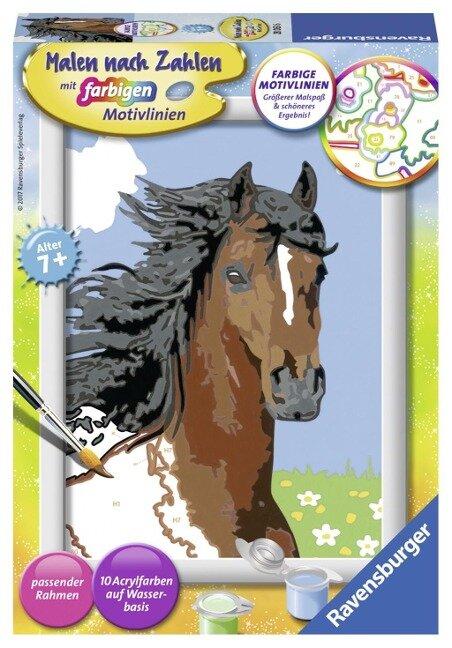 Pferdeportrait Malen nach Zahlen Serie E -