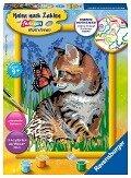 Katze mit Schmetterling. Malen nach Zahlen Serie D -