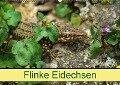 Flinke Eidechsen (Wandkalender 2019 DIN A2 quer) - K. A. Kattobello