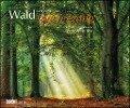 Waldspaziergang 2019 - Wandkalender -