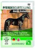 Pferdebeurteilung / Horse Evaluation -