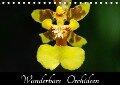 Wunderbare Orchideen (Tischkalender 2017 DIN A5 quer) - Jürgen Wöhlke