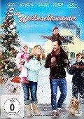 Ein Weihnachtswunder - Steven Paul, Jon Young, Misha Segal