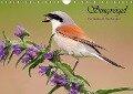Singvögel, Heimische und Durchzügler (Wandkalender 2018 DIN A4 quer) - Wolfgang Brandmeier