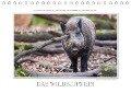 Emotionale Momente: Das Wildschwein. (Tischkalender 2018 DIN A5 quer) - Ingo Gerlach GDT