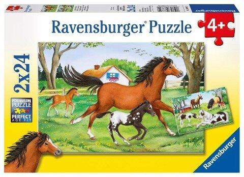 Welt der Pferde. Puzzle 2 x 24 Teile -