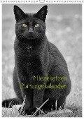 Miezekatzen Planungskalender (Wandkalender 2019 DIN A3 hoch) - Hans Zitzler