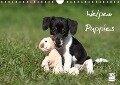 Welpen - Puppies (Wandkalender 2017 DIN A4 quer) - Jeanette Hutfluss