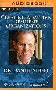 Creating Adaptive, Resilient Organizations - Daniel J. Siegel