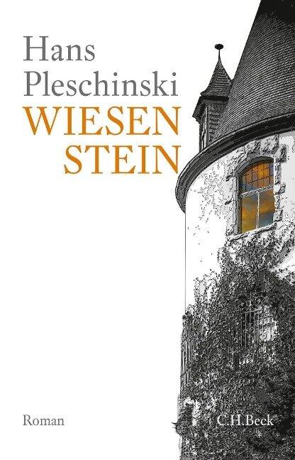 Wiesenstein - Hans Pleschinski