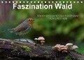 Faszination Wald. Waldimpressionen aus Nordhessen von Lutz Klapp (Tischkalender 2018 DIN A5 quer) - Lutz Klapp