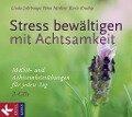 Stress bewältigen mit Achtsamkeit - Linda Lehrhaupt, Petra Meibert, Karin Krudup