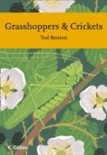 Grasshoppers and Crickets - Ted Benton