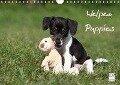 Welpen - Puppies (Wandkalender 2018 DIN A4 quer) - Jeanette Hutfluss