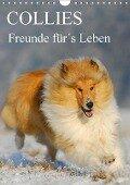 Collies - Freunde für¿s Leben (Wandkalender 2017 DIN A4 hoch) - Sigrid Starick