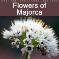 Flowers of Majorca (Wall Calendar 2017 300 × 300 mm Square) - Angelika Stern