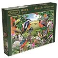 Falcon - Birds for all Seasons - 1000 Teile Puzzle -