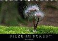 PILZE IM FOKUS 2019 (Wandkalender 2019 DIN A3 quer) - Georg Stelzner