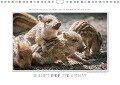 Emotionale Momente: Wilde Tiere der Heimat. / CH-Version (Wandkalender 2017 DIN A4 quer) - Ingo Gerlach Gdt