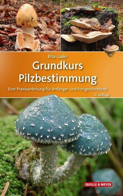 Grundkurs Pilzbestimmung - Rita Lüder