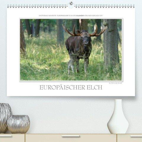 Emotionale Momente: Europäischer Elch. / CH-Version (Premium, hochwertiger DIN A2 Wandkalender 2021, Kunstdruck in Hochglanz) - Ingo Gerlach GDT