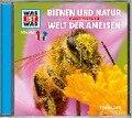 Was ist was Hörspiel-CD: Bienen und Natur/ Welt der Ameisen - Manfred Baur