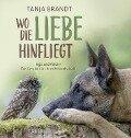 Wo die Liebe hinfliegt - Tanja Brandt