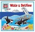 Was ist was Junior Hörspiel-CD: Wale & Delfine - Bettina Brömme, Luis-Max Anders