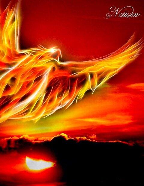 Fantasy Notizbuch: Phoenix - weiße Seiten mit Eckmotiv - Samuriel Sternenfeuer