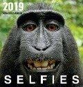 Selfies 2019. Postkartenkalender - Wolfram Burckhardt