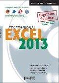 Excel 2013 Professional Lernprogramm - Lutz Hunger