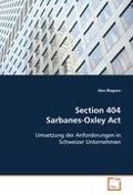Section 404 Sarbanes-Oxley Act - Alex Blagoev