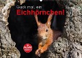 Guck mal, ein Eichhörnchen! (Wandkalender 2018 DIN A2 quer) - Margret Brackhan