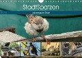 StadtSpatzen (Wandkalender 2018 DIN A4 quer) Dieser erfolgreiche Kalender wurde dieses Jahr mit gleichen Bildern und aktualisiertem Kalendarium wiederveröffentlicht. - Linda Schilling