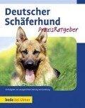 Deutscher Schäferhund - Susanne Samms