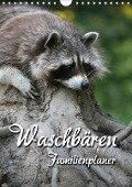Waschbären Familienplaner (Wandkalender 2018 DIN A4 hoch) - Martina Berg