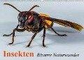 Insekten . Bizarre Naturwunder (Wandkalender 2018 DIN A2 quer) - Elisabeth Stanzer