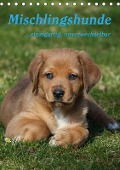 Mischlingshunde (Tischkalender 2019 DIN A5 hoch) - Antje Lindert-Rottke