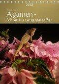 Agamen - Echsen aus vergangener ZeitAT-Version (Tischkalender 2018 DIN A5 hoch) - Bianca Schumann