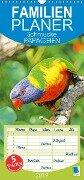 Schmucke Papageien (Wandkalender 2019 PRO_49_format hoch) - K. A. Calvendo