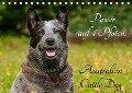 Power auf 4 Pfoten. Australian Cattle Dog (Tischkalender 2018 DIN A5 quer) Dieser erfolgreiche Kalender wurde dieses Jahr mit gleichen Bildern und aktualisiertem Kalendarium wiederveröffentlicht. - Sigrid Starick