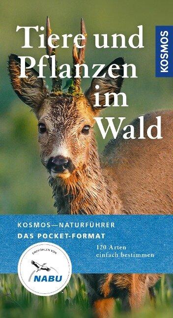 Tiere und Pflanzen unserer Wälder - Ute Wilhelmsen