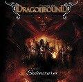 Dragonbound 17. Seelensturm - Jürgen/Zech, Bettina/Michaelis, Torsten Kluckert