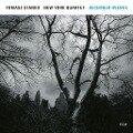 December Avenue - Tomasz Stanko New York Quartet